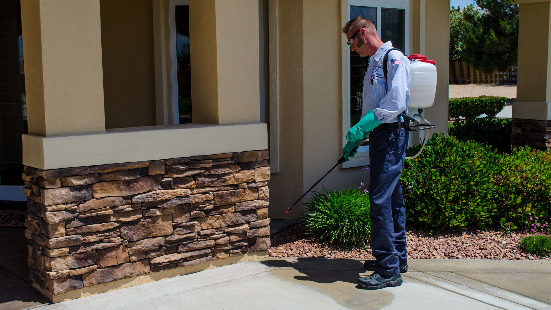 Make Your Home Protected Against Pests